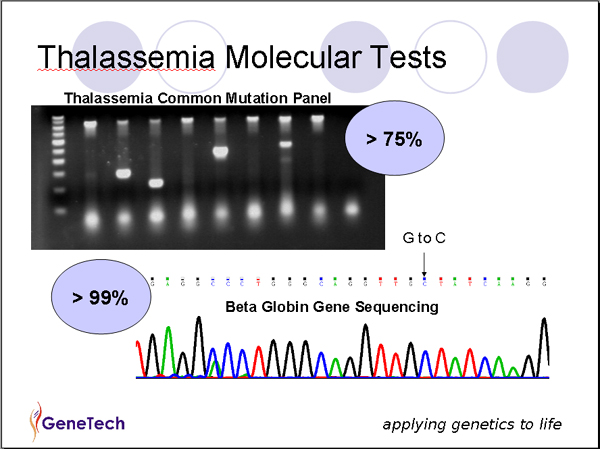 kyg-thalassemia-tests